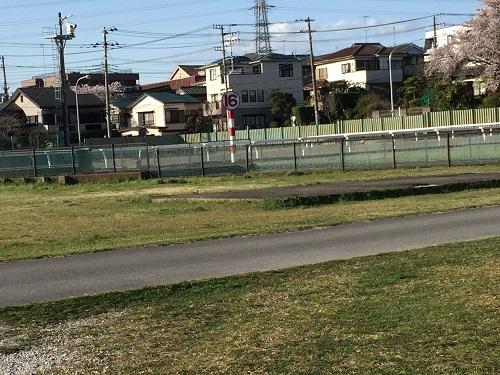 浦和競馬1600メートル